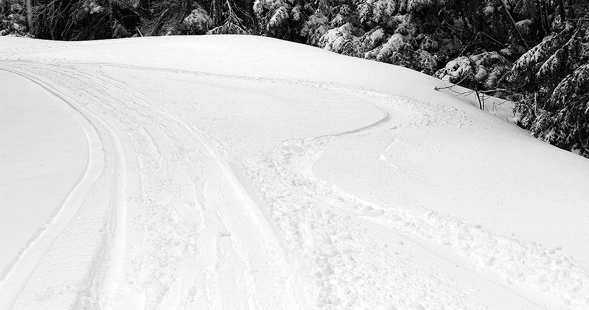 An image showing some ski tracks in powder snow from an early May snowstorm at Bolton Valley Ski Resort in Vermont